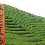【京都おぶぶ茶苑】JVC GC-XA2 写真タイムラプス テスト撮影~京都おぶぶ茶苑玄関